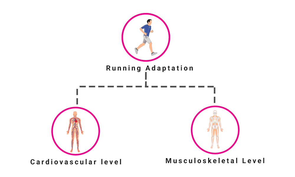 Running Injuries: Why & How to Prevent It